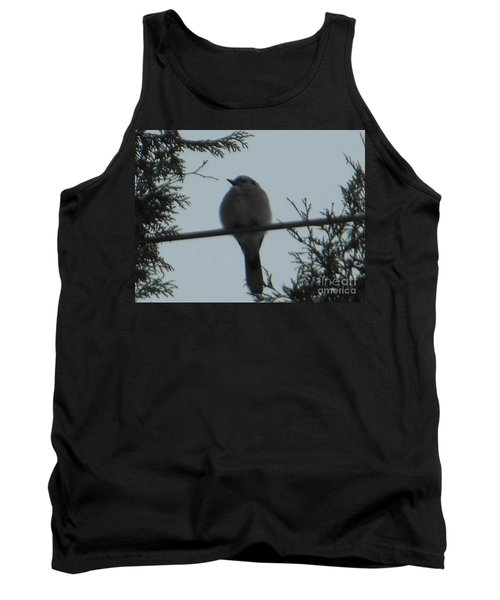 Blue Jay On Wire Tank Top