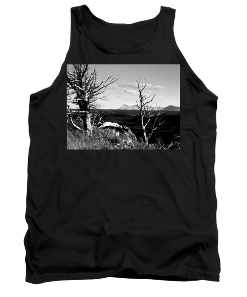 Bristle Cone Pines With Divide Mountain In Black And White Tank Top