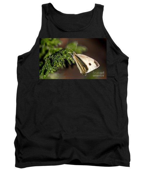 Cabbage Butterfly On Evergreen Bush Tank Top