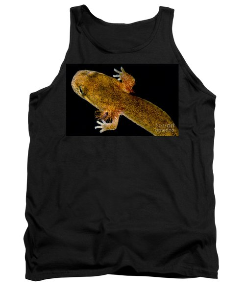 California Giant Salamander Larva Tank Top by Dant� Fenolio