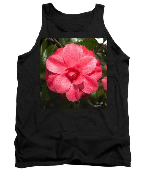 Camellia Japonica ' Mathotiana Rosea' Tank Top
