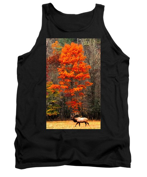 Cataloochee Color Tank Top