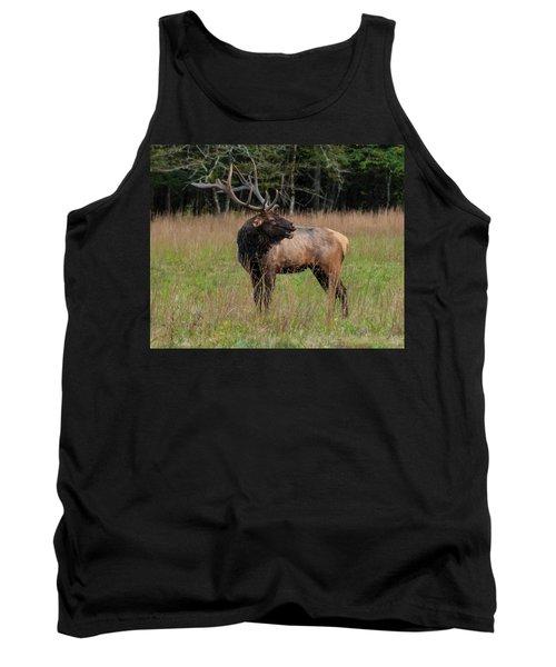 Tank Top featuring the digital art Cataloochee Valley Elk  by Chris Flees