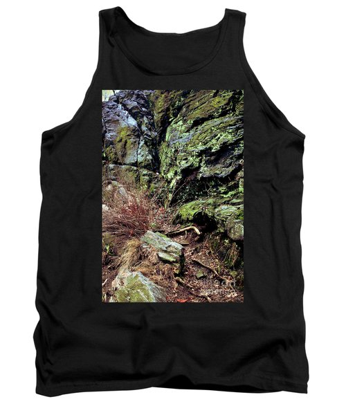 Central Park Rock Formation Tank Top