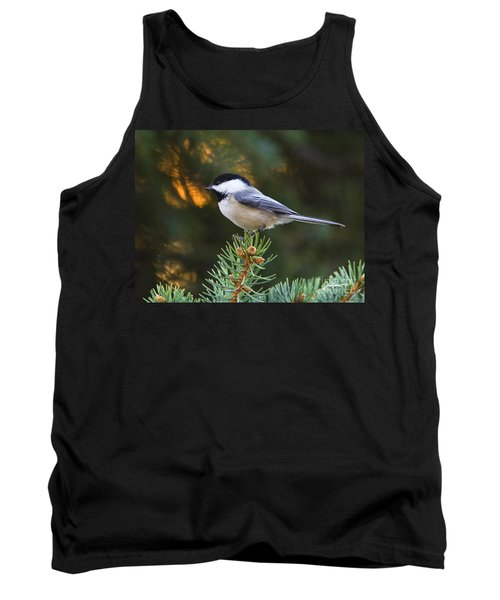 Chickadee In Spruce  Tank Top