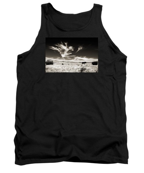 Chihuahuan Desert In Sepia Tank Top by Allen Sheffield