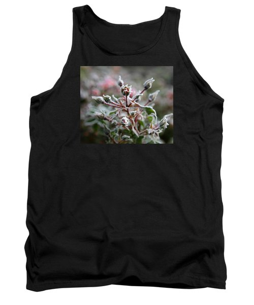 Tank Top featuring the photograph Christmas Miniature Rosebuds by Katie Wing Vigil