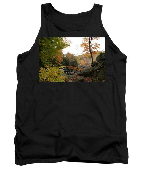 Colors Along The Stream Tank Top by Lois Lepisto