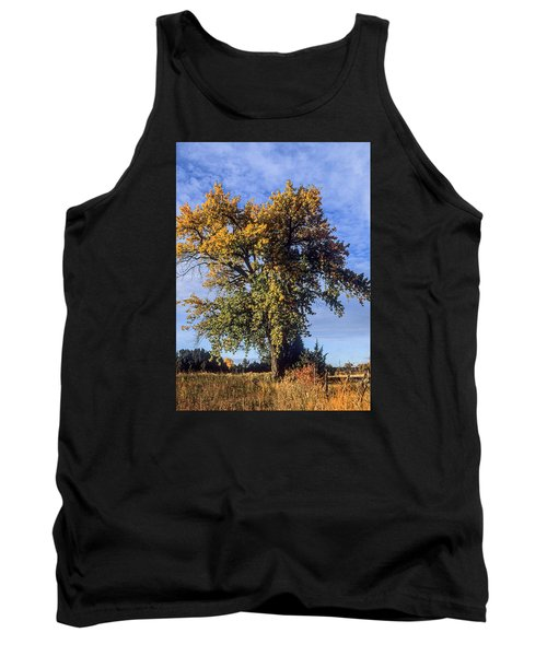 Cottonwood #3 Colorado Ranch Country In Fall Tank Top by John Brink