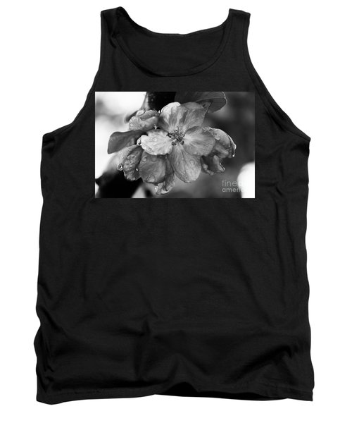 Crabapple Blossom In Rain Tank Top by Marilyn Carlyle Greiner