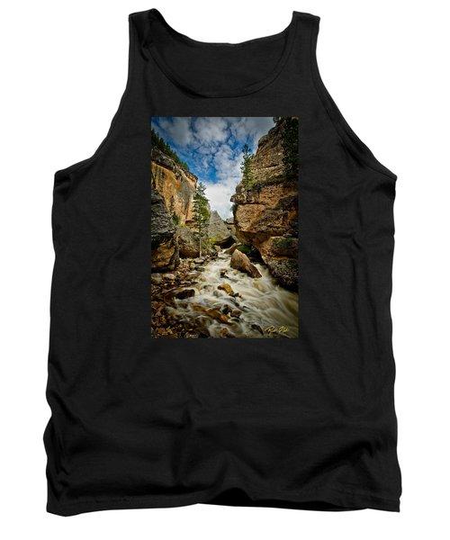 Crazy Woman Canyon Tank Top by Rikk Flohr
