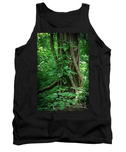 Creek And Wood At Roman Nose State Park #2 Tank Top
