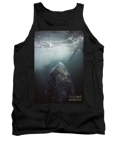 Curious Gray Whale And Tourist Tank Top
