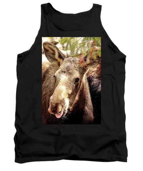 Cutie Moose Tank Top