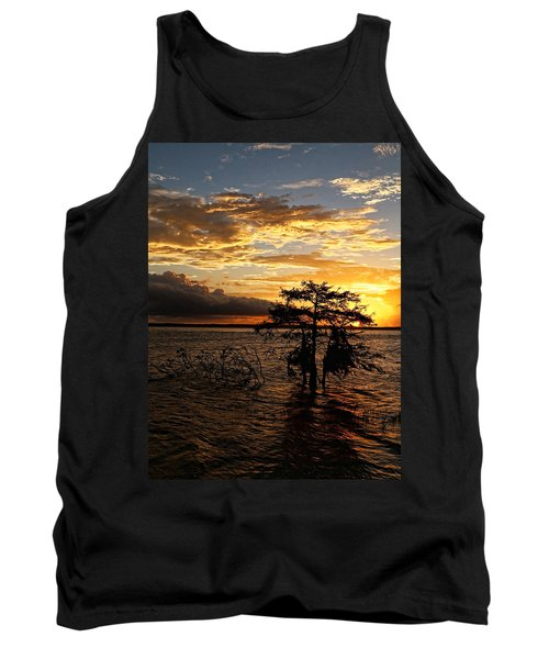 Cypress Sunset Tank Top by Judy Vincent