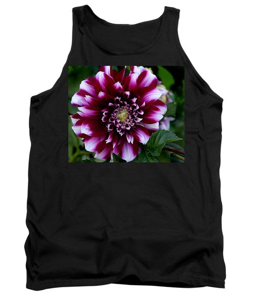 Tank Top featuring the photograph Dahlia by Denise Romano