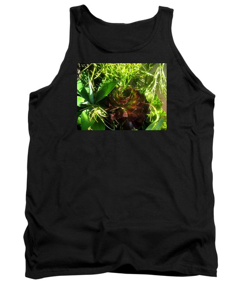 Dawning Succulents Tank Top