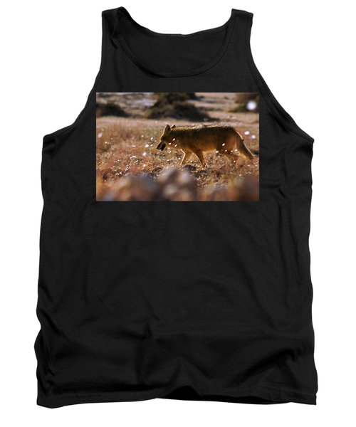 Death Valley Coyote And Flowers Tank Top