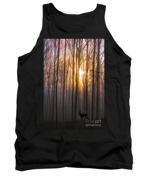 Deer In The Forest At Sunrise Tank Top by Diane Diederich