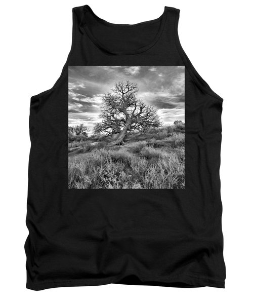 Devils Canyon Tree Tank Top