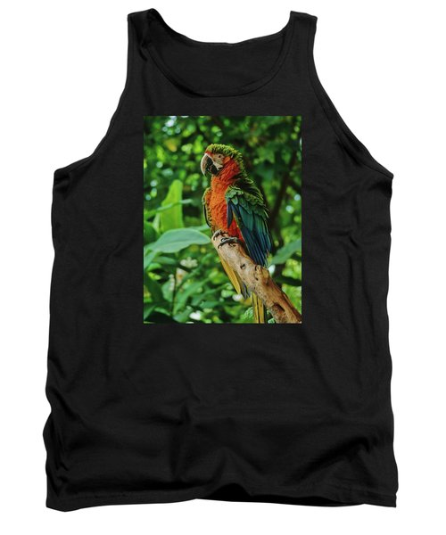 Tank Top featuring the photograph Don't Ruffle My Feathers by Marie Hicks