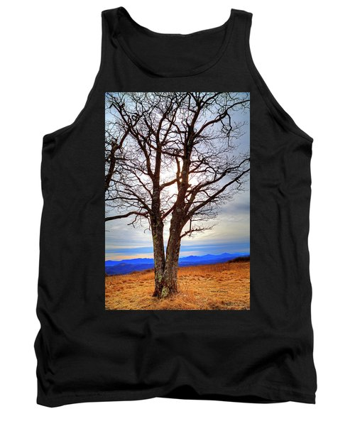 Dreamcatcher Tank Top by Dale R Carlson