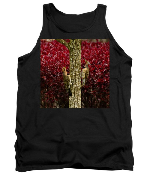 Dueling Woodpeckers Tank Top