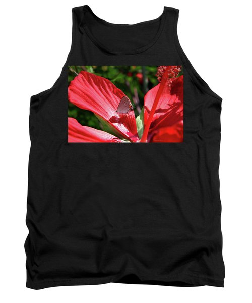 Eastern Tailed Blue Butterfly On Red Flower Tank Top by Inspirational Photo Creations Audrey Woods