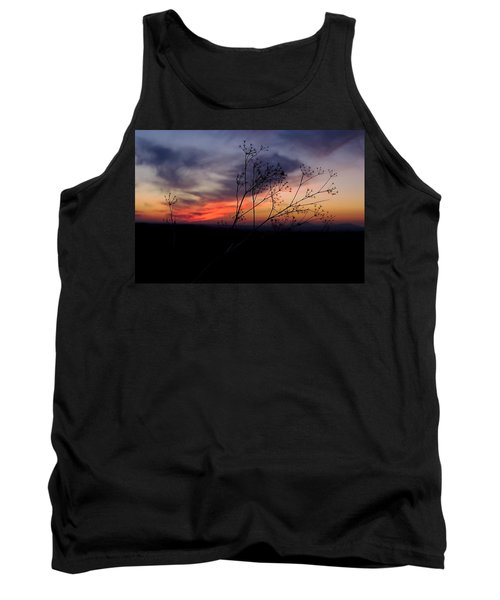 Evening Light Over Meadow Tank Top