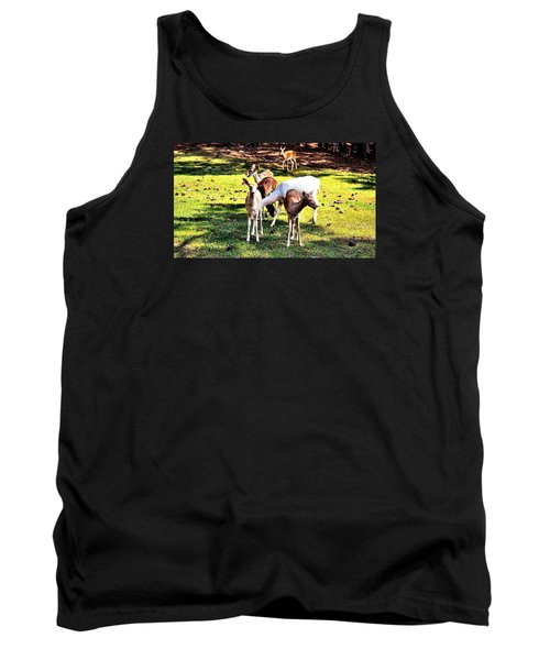 Family Of Deer Tank Top by James Potts