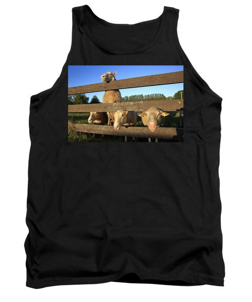 Four Sheep At A Fence Tank Top