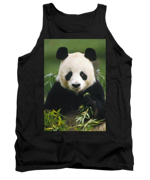 Giant Panda Ailuropoda Melanoleuca Tank Top
