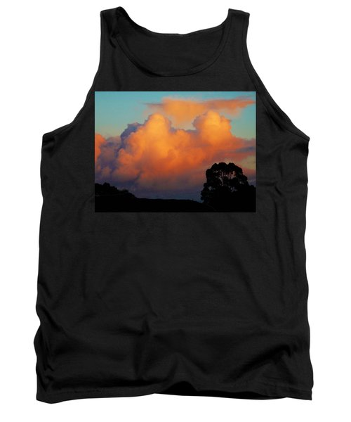 Gilded Dawn Tank Top by Mark Blauhoefer