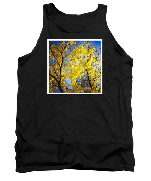 Golden October Tree In Fall Tank Top