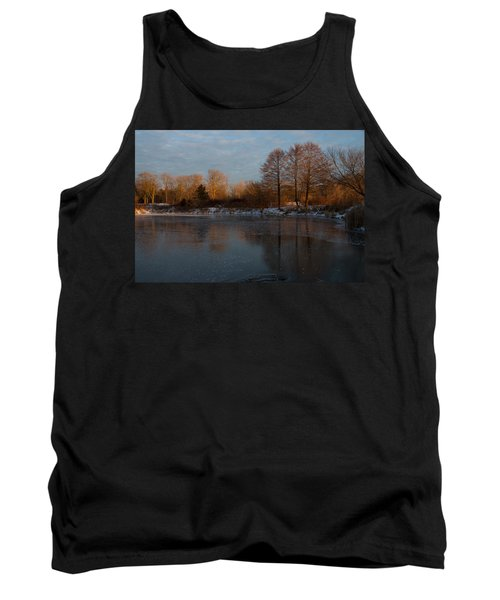 Gray And Amber - An Early Winter Morning On The Lake Shore Tank Top