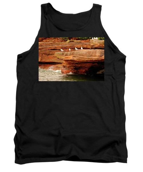 Gulls On Outcropping Tank Top