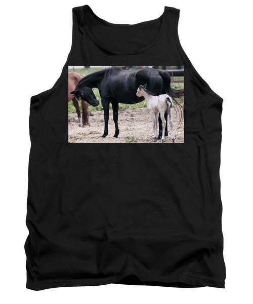 Horse And Colt Tank Top