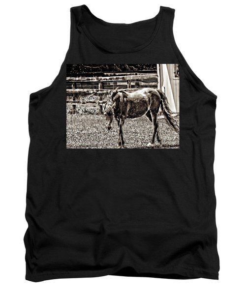 Tank Top featuring the photograph Horse In Black And White by Annie Zeno