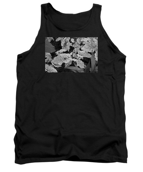 Hosta Bw - Pla363 Tank Top by G L Sarti