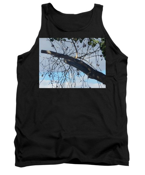 Tree Leaves Into The Sky Tank Top