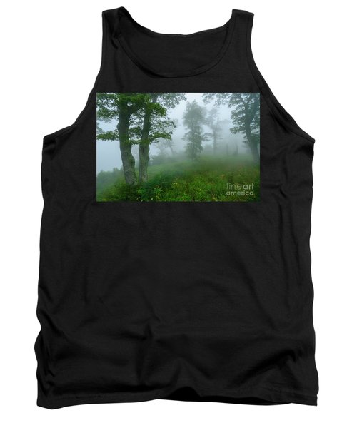 Tank Top featuring the photograph Jewell Hollow Overlook by Thomas R Fletcher