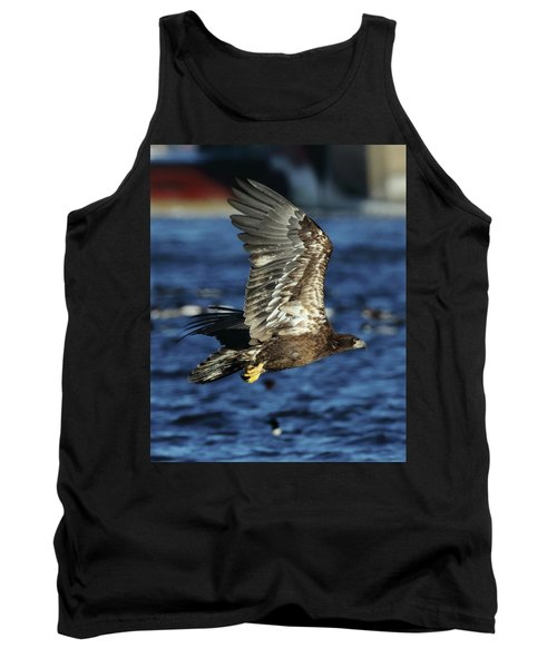 Juvenile Bald Eagle Over Water Tank Top by Coby Cooper