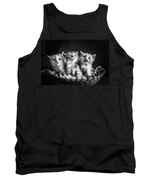 Kitten Trio Tank Top