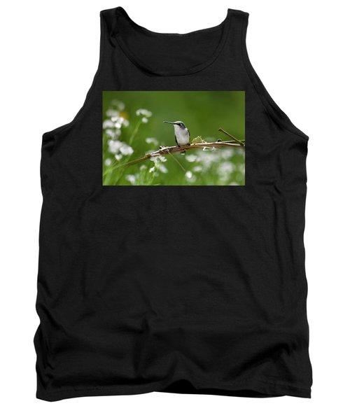 Meadow Hummingbird Tank Top