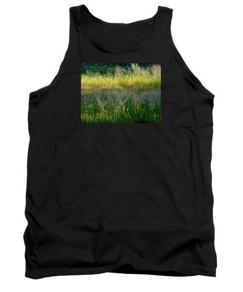Morning Light On Grant Meadow Tank Top by Amelia Racca