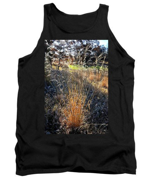 Morning Sun Backlights Fall Grasses In Glacial Park Tank Top