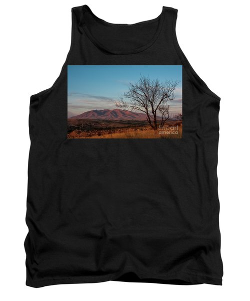 Mount Ara At Sunset With Dead Tree In Front, Armenia Tank Top by Gurgen Bakhshetsyan