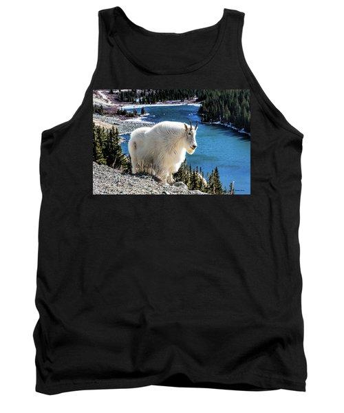 Mountain Goat At Lower Blue Lake Tank Top
