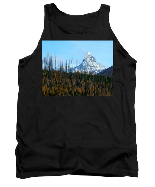 Mt St Nicolas After The Fire Tank Top