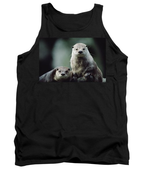North American River Otter Lontra Tank Top by Gerry Ellis